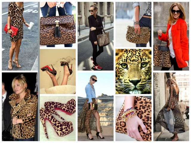 leopard print collag