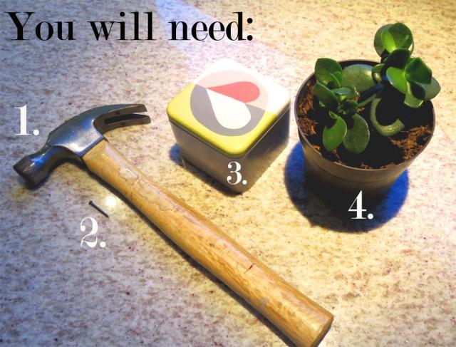 plant 1